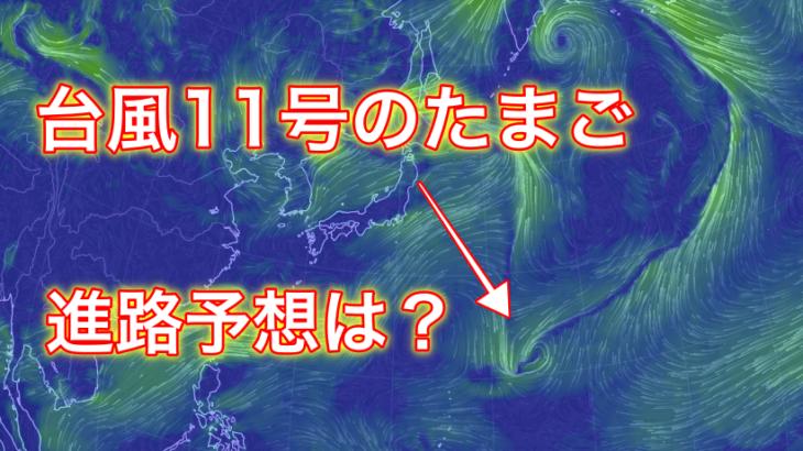 【2019年】台風11号のたまごの進路予想は?米軍と気象庁の情報からご紹介!
