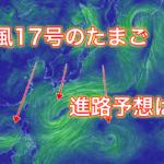 【2019年】台風17号のたまごの進路予想は?米軍や気象庁の情報から紹介!