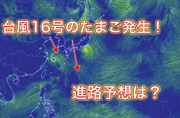 【2019年】台風16号のたまごの進路予想は?米軍や気象庁の情報から紹介!