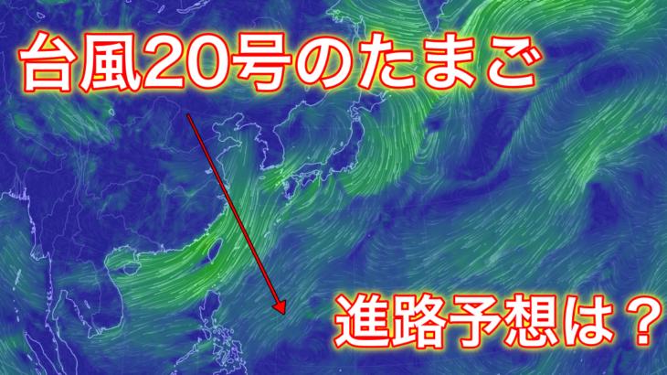 【2019年】台風20号のたまごの進路予想は?米軍と気象庁の情報から調査!